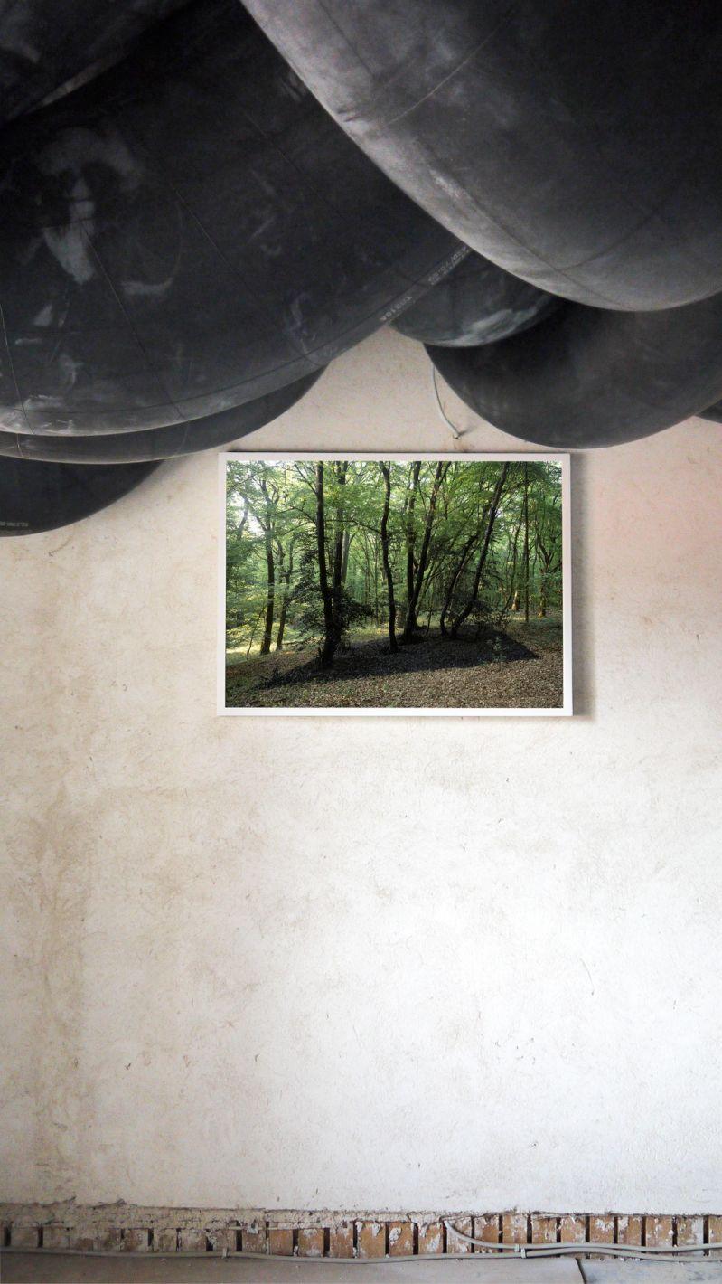 Wiesen bei Nacht | Michael Sailstorfer | 25.07. — 30.09.2015